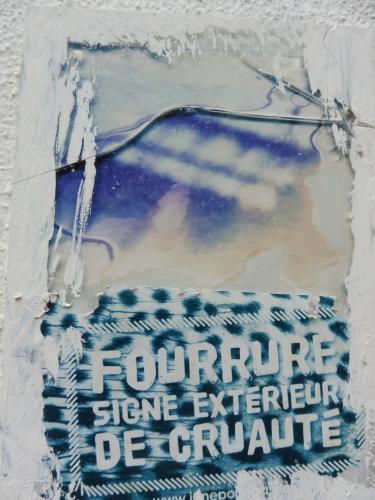Fourrure.JPG
