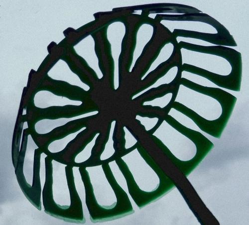 Umbrella2-1.jpg