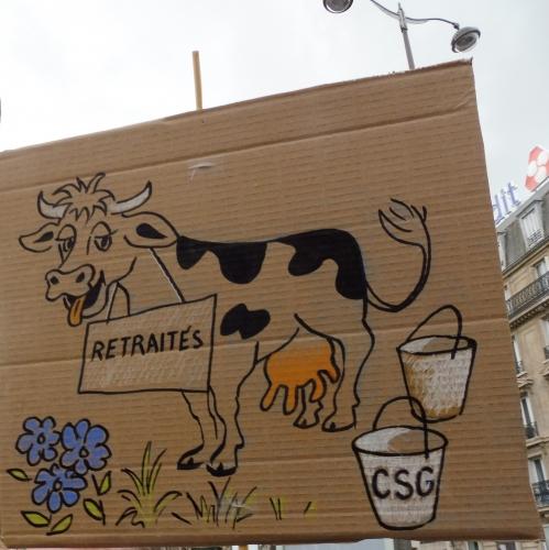 1 vache.jpg