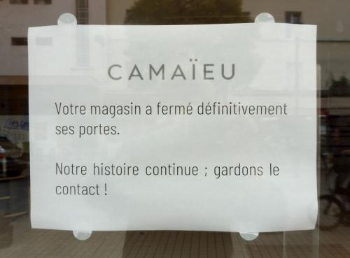 Camaïeu1.jpg