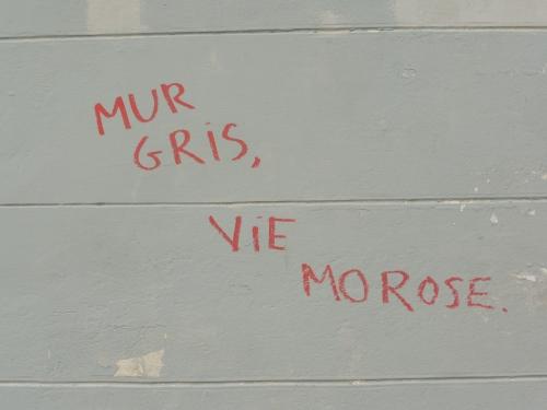 murgrisviemorose.JPG