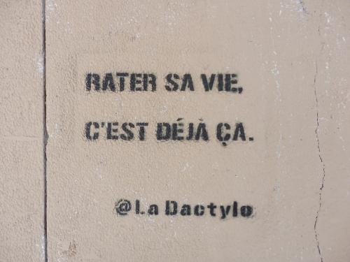 ladactyratersavie.JPG